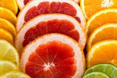 Citrus. Grapefruit Orange Lime Lemon Colour Royalty Free Stock Photos