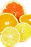 Citrus Halves Stock Image