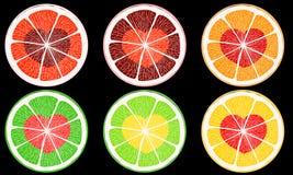 Citrus hearts Stock Image