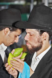 The citrus for the holiday of Sukkot Royalty Free Stock Image