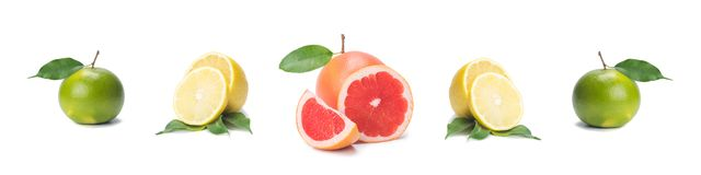 Citrus isolate, fresh lemon, pink grapefruit, lime, whole and slices, on a white background, in a row stock photos