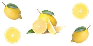Citrus isolate, fresh lemon, whole and slices, on white background royalty free stock image