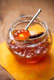 Citrus jam Royalty Free Stock Image