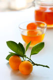 Citrus jam Royalty Free Stock Photography