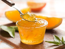 Citrus jam Royalty Free Stock Images
