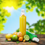 Citrus juice bottle Stock Images