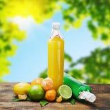 Citrus juice bottle Stock Images