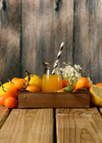 Citrus juice with fruits around Royalty Free Stock Photo