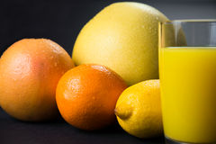 Citrus juice Stock Image