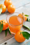 Citrus juice Stock Photography