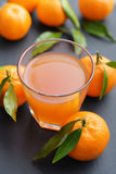 Citrus juice in glass Stock Images