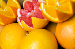Citrus juice set fruits Royalty Free Stock Photography