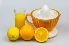 Citrus juicer on a white background Royalty Free Stock Photo