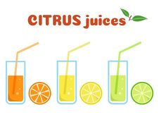 Citrus juices in glasses with fruits, colorful set, vector vector illustration