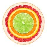 citrus klar text för bakgrund royaltyfri bild