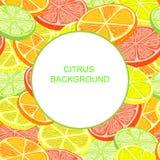 citrus klar text för bakgrund Royaltyfria Foton