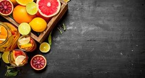 citrus klar text för bakgrund Ny citrus fruktsaft med skivor av limefrukter, apelsiner, grapefrukter och citroner Arkivfoton