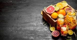 citrus klar text för bakgrund Ny citrus fruktsaft med skivor av limefrukter, apelsiner, grapefrukter och citroner Royaltyfri Bild
