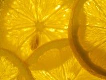 Citrus Lemon Royalty Free Stock Photography