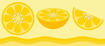 Citrus - Lemon royalty free illustration
