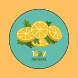 Citrus lemon Stock Photos
