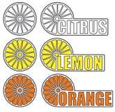 Citrus lemon and orange Royalty Free Stock Photo