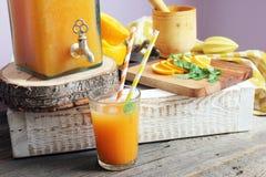 Citrus lemonad Arkivbilder