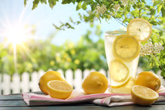 Citrus Lemonade In Garden Setting. Stock Images