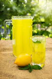 Citrus lemonade in pitcher Stock Image
