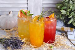 Citrus lemonade with thyme and mint Royalty Free Stock Photo