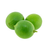 Citrus lime fruit isolated Royalty Free Stock Images