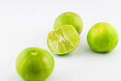 Citrus lime fruit isolated Royalty Free Stock Photo