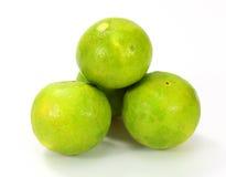 Citrus lime fruit Stock Photography