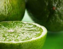 citrus limefrukt royaltyfri bild