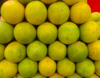Citrus limetta, alternatively considered to be a cultivar of Citrus limon, C. limon `Limetta`, is a species of citrus, commonly kn Royalty Free Stock Images