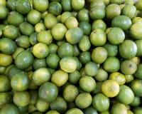 Citrus Limon Foto de archivo
