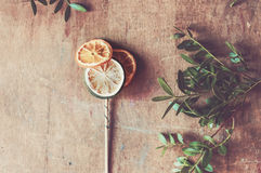 Citrus lollipop in retro tones Stock Photos