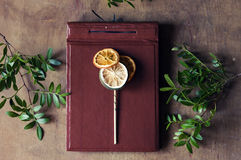 Citrus lollipop on vintage leather album Stock Image