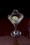 Citrus martini Royalty Free Stock Image