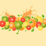 Citrus med färgstänk av fruktsaft- och mintkaramellsidor Vektor Illustrationer