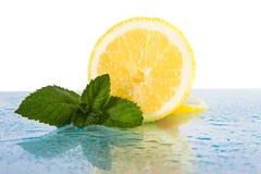 Citrus med mintkaramellsidor Arkivbilder