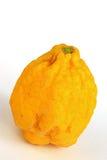 Citrus medica cedrato Fotografia Stock Libera da Diritti