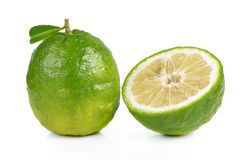 Citrus medica Linn on white background Royalty Free Stock Photos