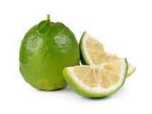 Citrus medica Linn on white background Royalty Free Stock Photos