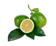 Citrus medica   Linn on white background Royalty Free Stock Image