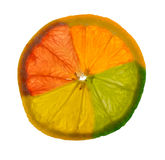 Citrus Medley. A montage of a grapefruit, orange, lemon, and a lime combined into a single slice of fruit stock photos