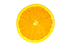 Citrus. In Middle cut view and on isolate background Royalty Free Stock Images