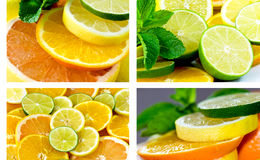 Citrus Mix Royalty Free Stock Image