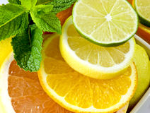 Citrus Mix. Slices of grapefruit, orange, lemon and lime decorated with mint leaves Royalty Free Stock Photos