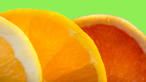 Citrus mix Stock Photography